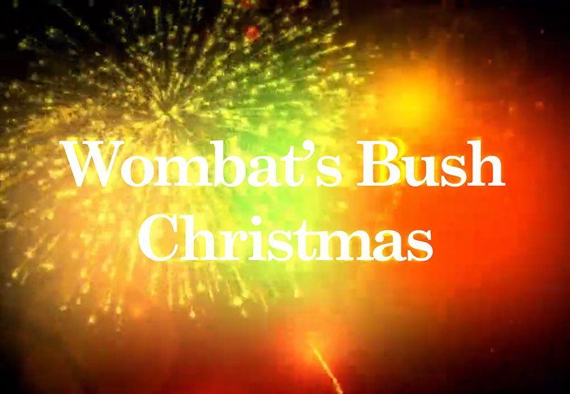Wombats Bush Christmas
